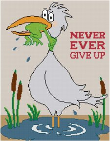 never-give-up-fsi-jpg
